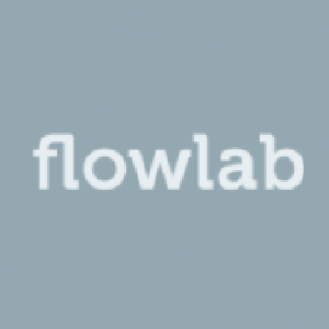 Capture the Flag                 (Flowlab Edition)